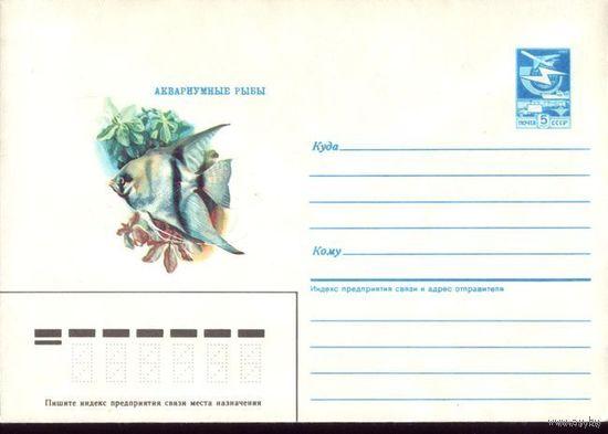 1986 год ХМК Аквариумные рыбки