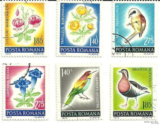 Флора и фауна. Птицы и цветы. Румыния 1973 г.