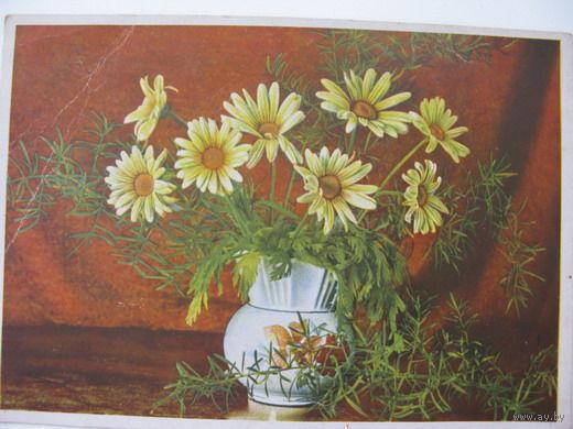 Цветы  ГДР 60-ые годы