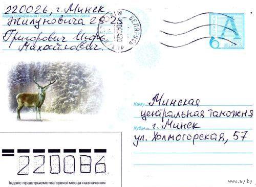 """2004. Конверт, прошедший почту """"Олень"""""""