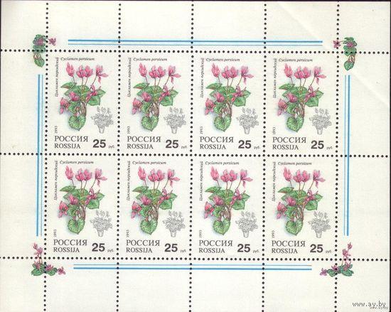 Малый лист 1993 год Россия Комнатные растения