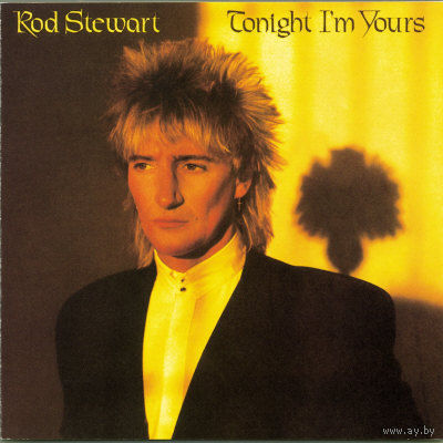 Rod Stewart - Tonight I'm Yours - LP - 1981