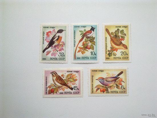 1981, август. Певчие птицы