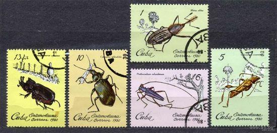 Фауна. Жуки. Куба. 1980. Серия 5 марок