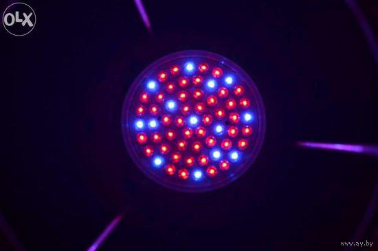 Лампочка светодиодная энергосберегающая для стимуляции роста растений