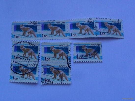 Россия марки 2008г лиса 1 руб 9 шт. распродажа