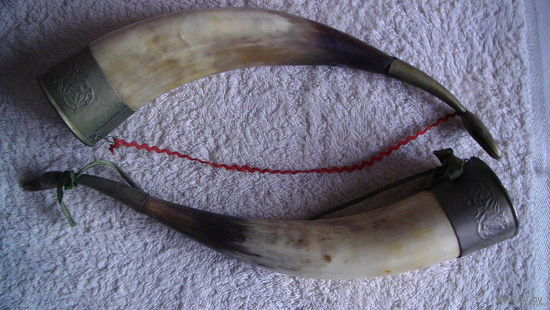 Два рога-кубка. сувенир