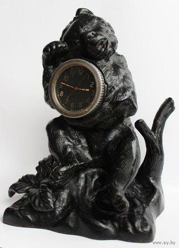 Касли медведь