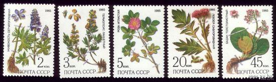 5 марок 1985 год Лекарственные растения