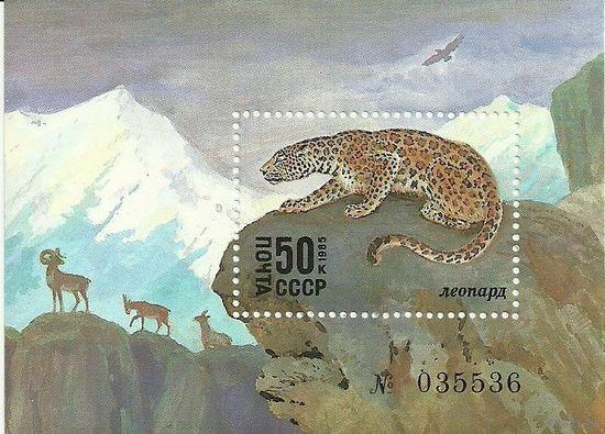 """Животные Красной книги. Блок негаш. """"Леопард"""" 1985 фауна СССР"""