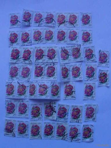 Беларусь марки 2008г Пеония распродажа