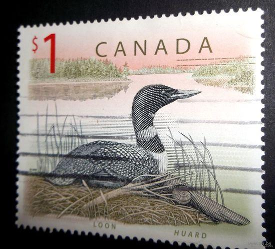 Канада / Kanada - Утка - большая красивая марка для коллекционеров