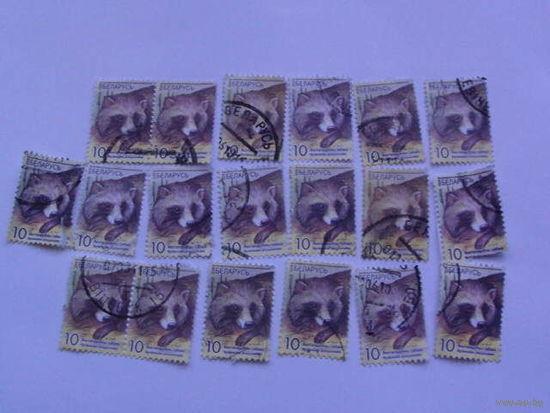 Беларусь марки 2008г Енотовидная собака распродажа