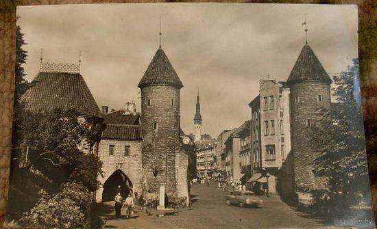 1960 г. Таллин, ворота на ул.Виру подписана