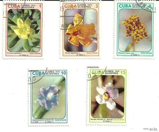 Цветы. Серия 5 марок 1974 флора Куба
