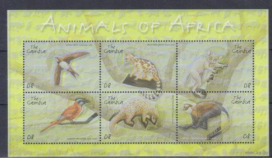 [1161] Гамбия 2001. Фауна. МАЛЫЙ ЛИСТ.