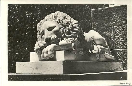 Почтовая открытка Крым Алупка Спящий лев 1958