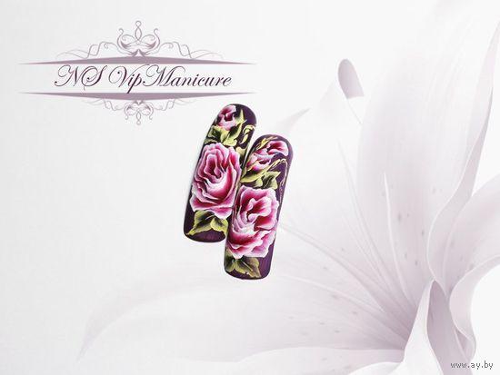 Наращивание, дизайн и роспись ногтей (10 видеоматериалов на 3 DVD-дисках)