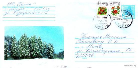 "2003. Конверт, прошедший почту ""Зимний лес"""